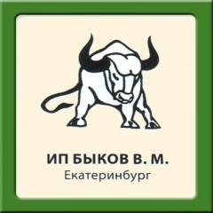 Стелька Быкова