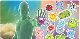 Как «накормить» и «напоить» наш иммунитет